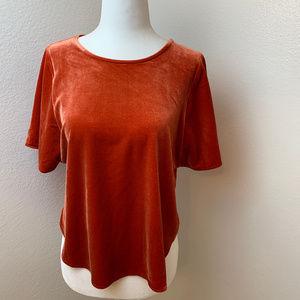 NWT Madewell Burnt Orange Velvet Top. XS
